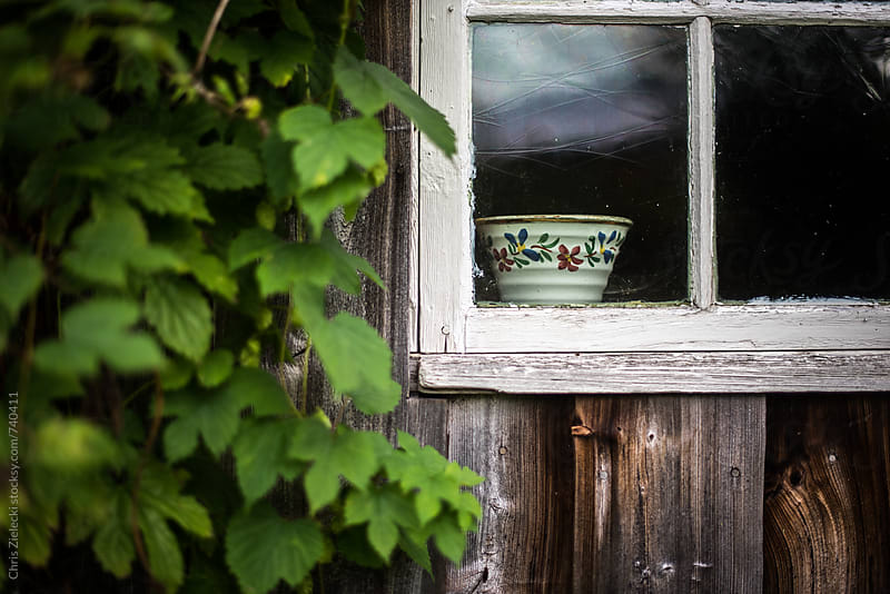 a bowl in a window of a wooden house by Chris Zielecki for Stocksy United