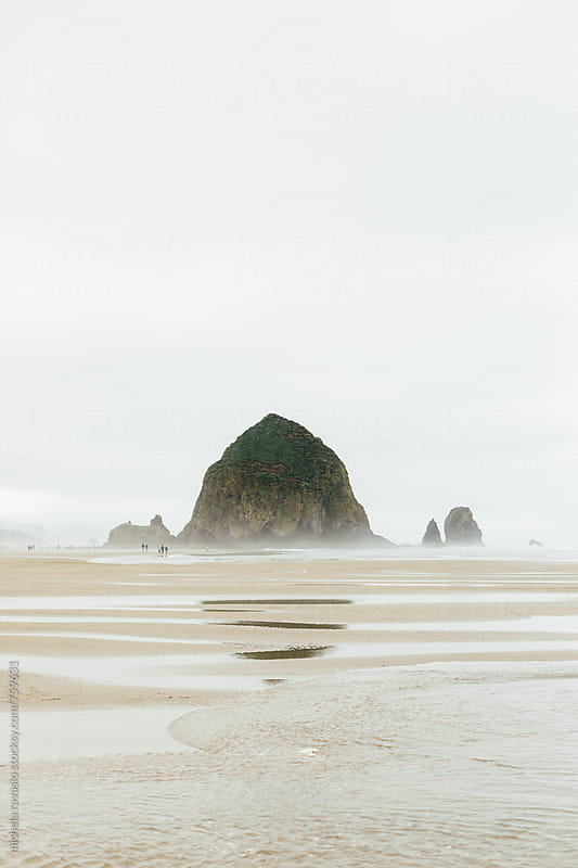 View of Haystack Rock with reflection by michela ravasio for Stocksy United