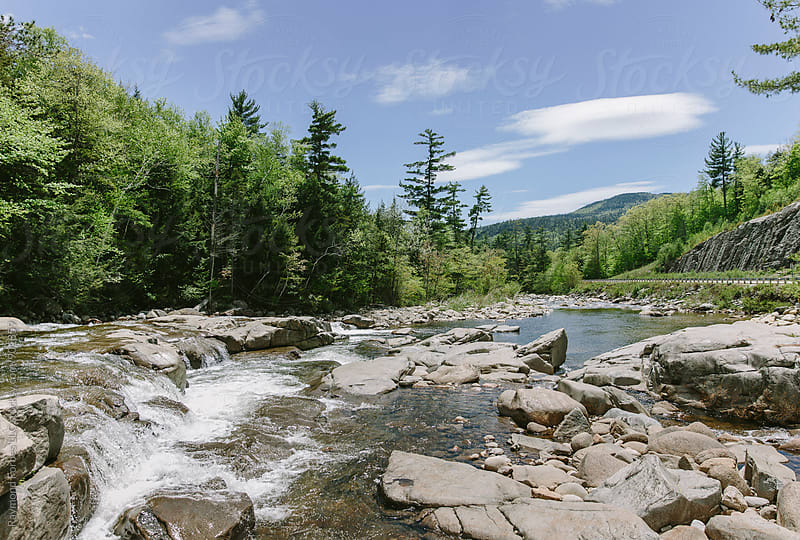 Late Spring White Mountain National Forest  by Raymond Forbes LLC for Stocksy United