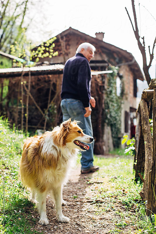 Old man with his dog by michela ravasio for Stocksy United