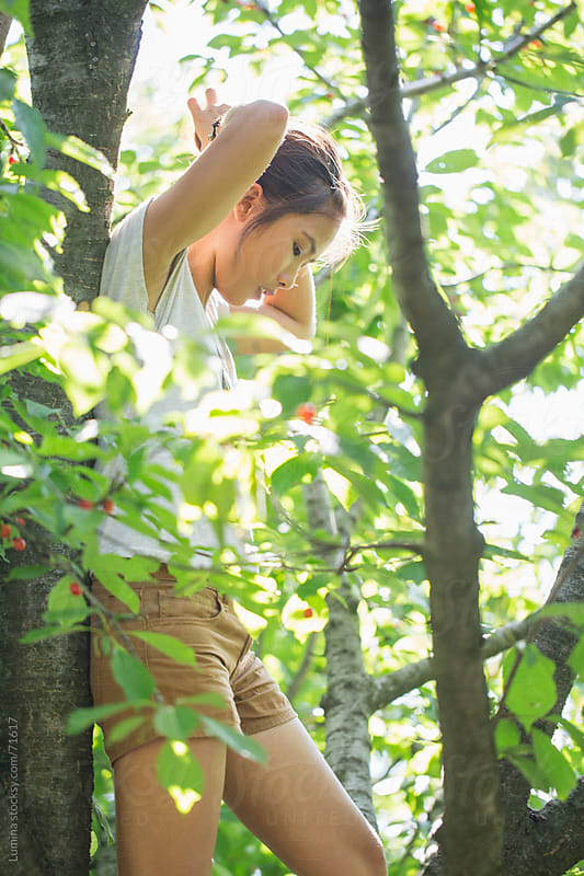 Asian Woman in a Cherry Tree by Lumina for Stocksy United
