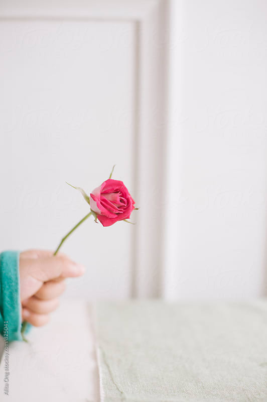 Toddler holding a stalk of rose by Alita Ong for Stocksy United