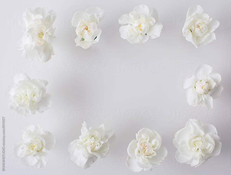 White flowers shaped a rectangle. by BONNINSTUDIO for Stocksy United