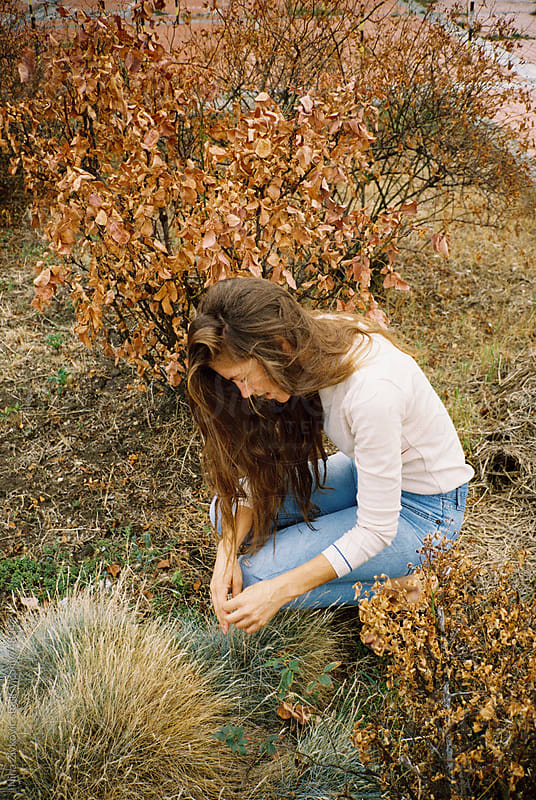 A girl in the dry bushes. by Nina Zivkovic for Stocksy United