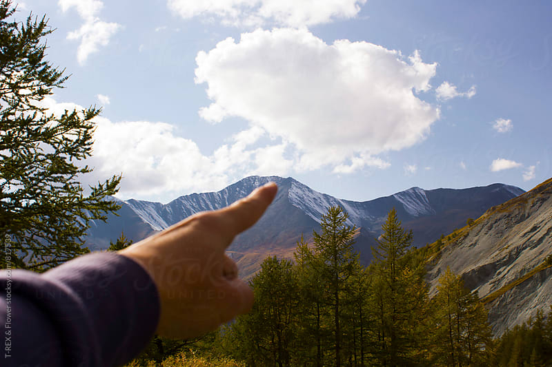 Man's hand pointing at puffed cloud in the blue sky by Danil Nevsky for Stocksy United