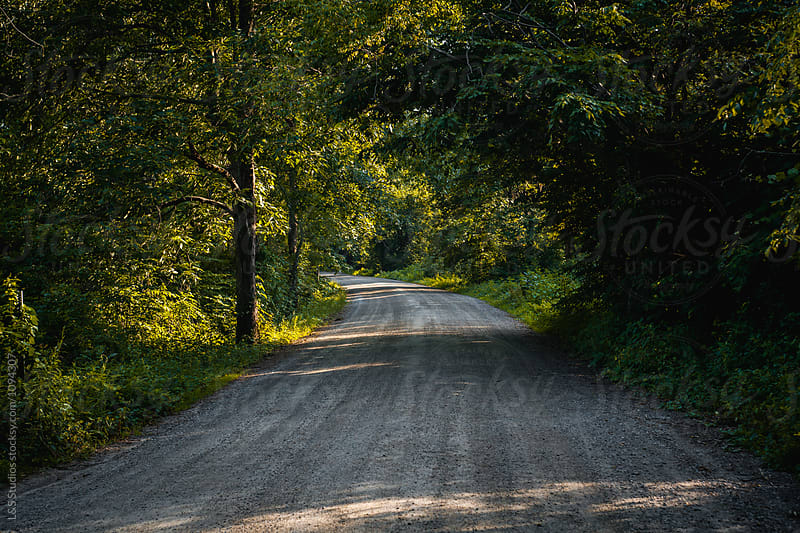 Dirt road by L&S Studios for Stocksy United