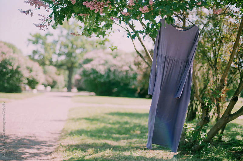 Purple dress hanging on a tree by Lyuba Burakova for Stocksy United