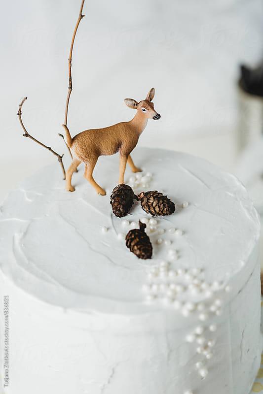 Winter cake by Tatjana Zlatkovic for Stocksy United