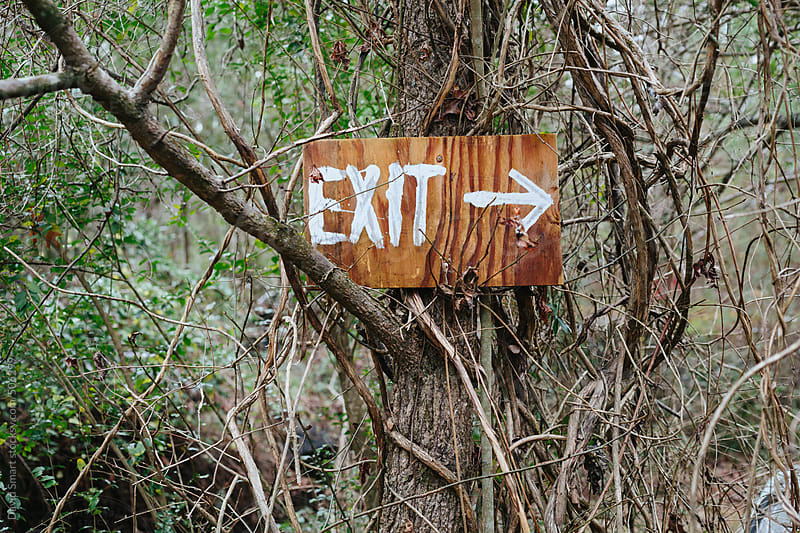 Exit painted on a piece of wood nailed to a tree in a forest by David Smart for Stocksy United