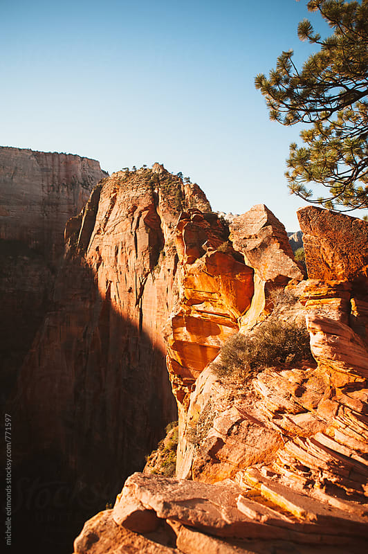 Hiking Angels Landing in Zion National Park by michelle edmonds for Stocksy United