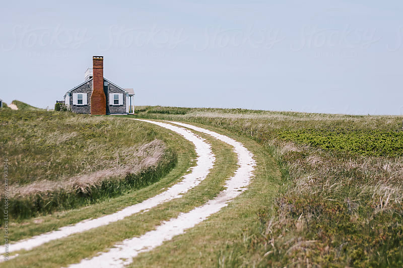 Nantucket Landscape,  by Raymond Forbes LLC for Stocksy United