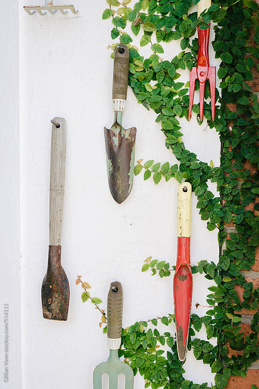a collection of gardening tools on the wall by Gillian Vann for Stocksy United