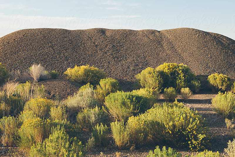Gravel pile and field of sagebrush, near Jackpot, Nevada by Paul Edmondson for Stocksy United