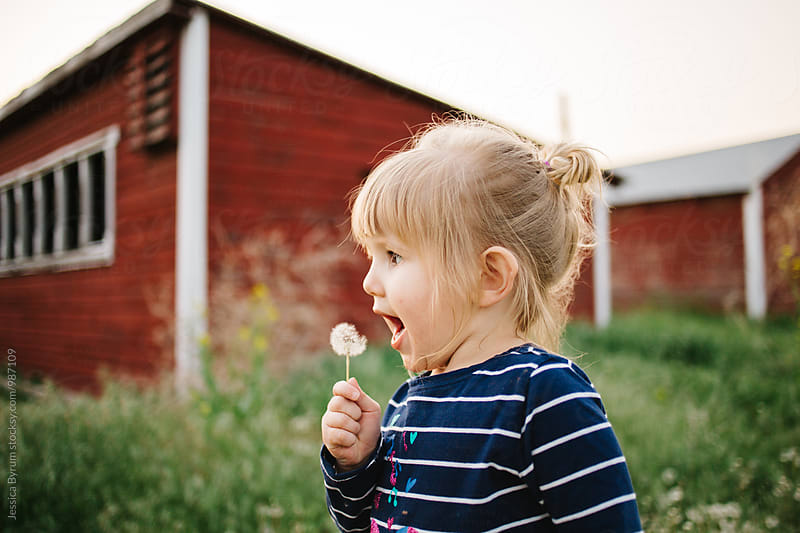 Toddler girl blowing dandelion by Jessica Byrum for Stocksy United