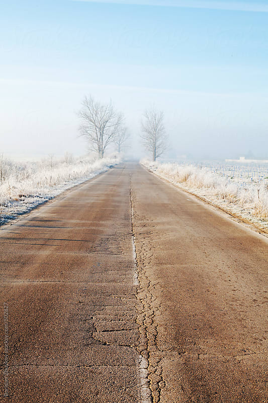 Old Countryside Road In Winter Early Morning by Borislav Zhuykov for Stocksy United