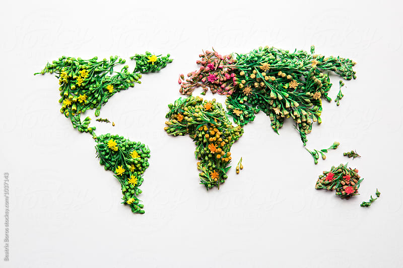Green Earth concept made of organic natural flowers by Beatrix Boros for Stocksy United