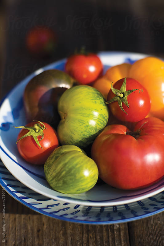 Bowl of Tomatoes in Sunshine by Sara Remington for Stocksy United