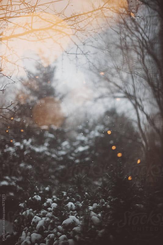 Winter Scene by Kim Swain for Stocksy United