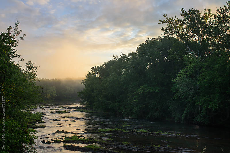 sunrise over misty creek by Deirdre Malfatto for Stocksy United