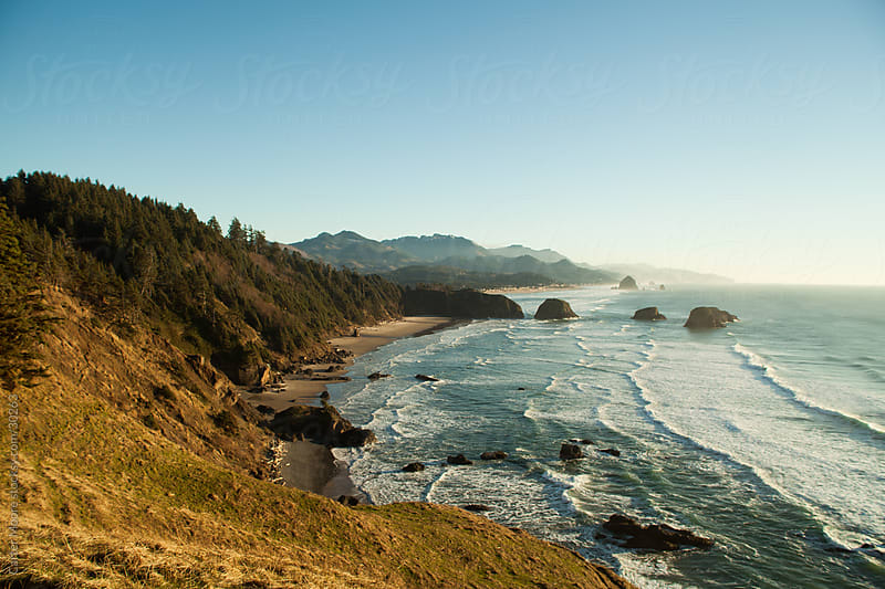 Ecola State Park, OR by Carter Moore for Stocksy United
