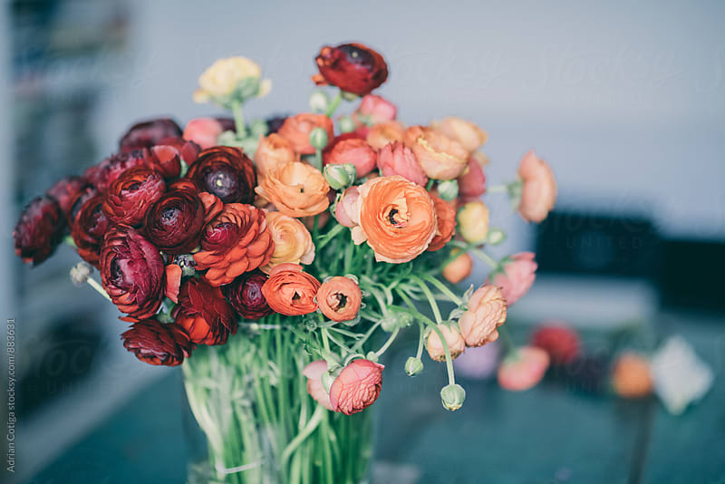 Spring flowers bouquet with orange and red ranunculus by Adrian Cotiga for Stocksy United