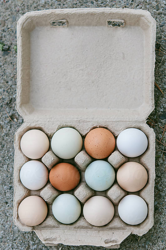 Carton of local organic colorful eggs by Deirdre Malfatto for Stocksy United