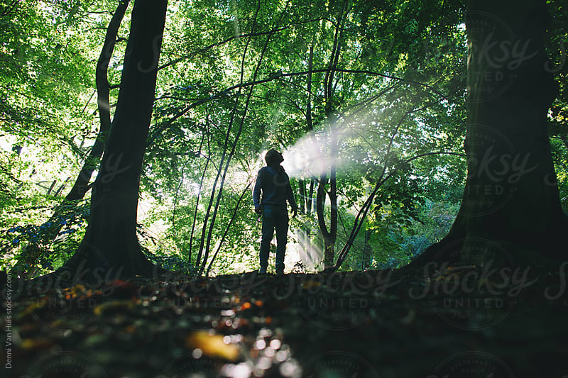 Person standing in the forest and looks up  by Denni Van Huis for Stocksy United