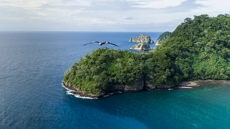 A seabird trying to attack drone, beautiful aerial view of Cocos island by Song Heming for Stocksy United