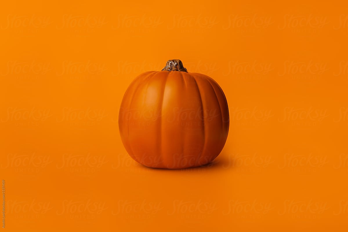 Pumpkin On A Solid Orange Background By Austin Lord Pumpkin Orange Stocksy United