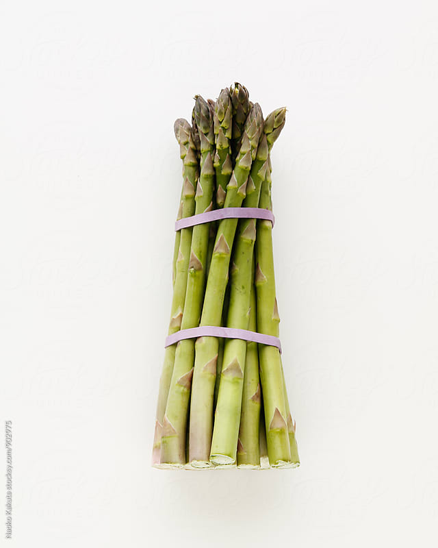 one bunch of asparagus on white by Naoko Kakuta for Stocksy United