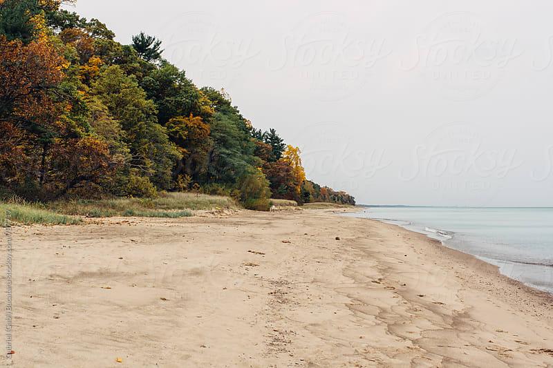 Fall colored forest by a lake beach by Gabriel (Gabi) Bucataru for Stocksy United