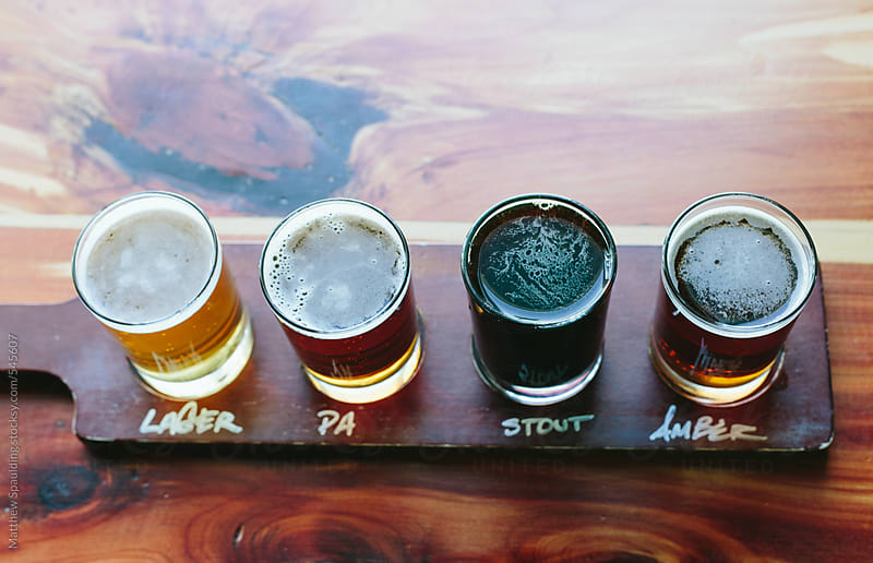 Flight of micro brew beer at brewery by Matthew Spaulding for Stocksy United