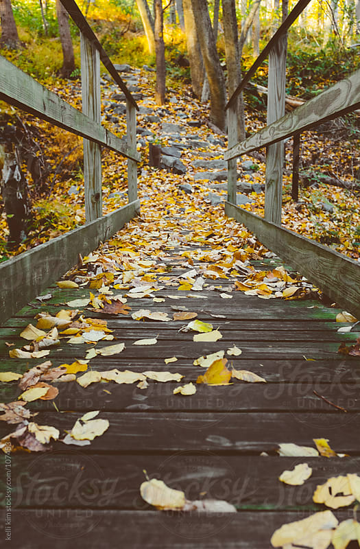 Wooden pedestrian bridge covered with colorful autumn leaves by Kelli Seeger Kim for Stocksy United