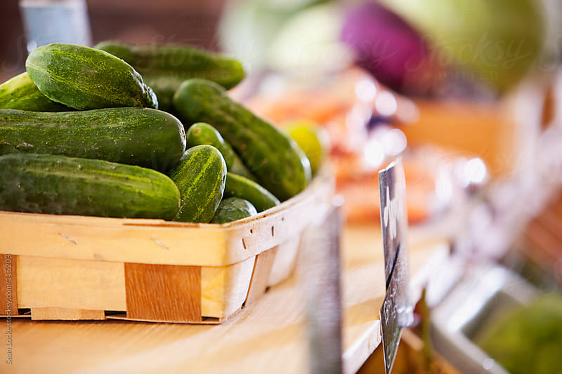 Market: Cucumbers in a Basket by Sean Locke for Stocksy United