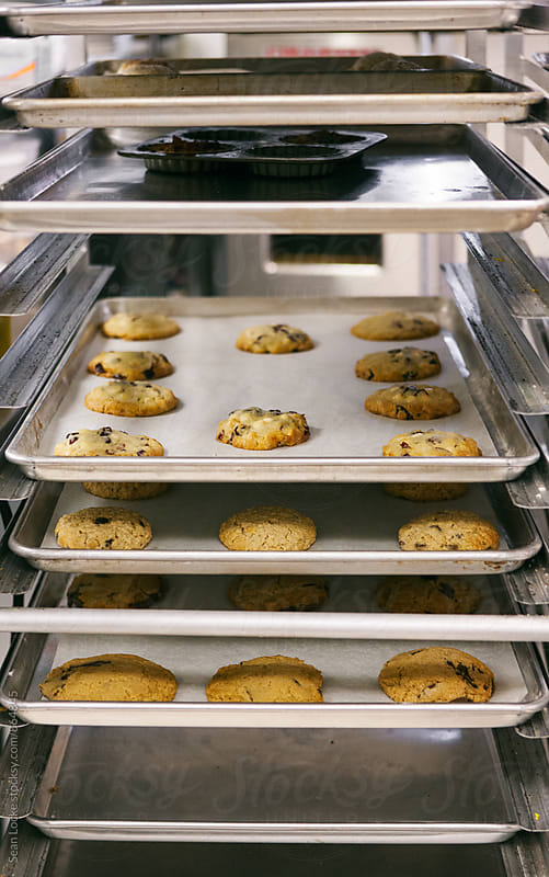 Bakery: Rack Of Cookies Cooling by Sean Locke for Stocksy United