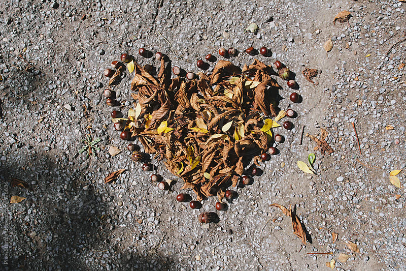 Heart made of autumn leaves and chestnuts by Pixel Stories for Stocksy United