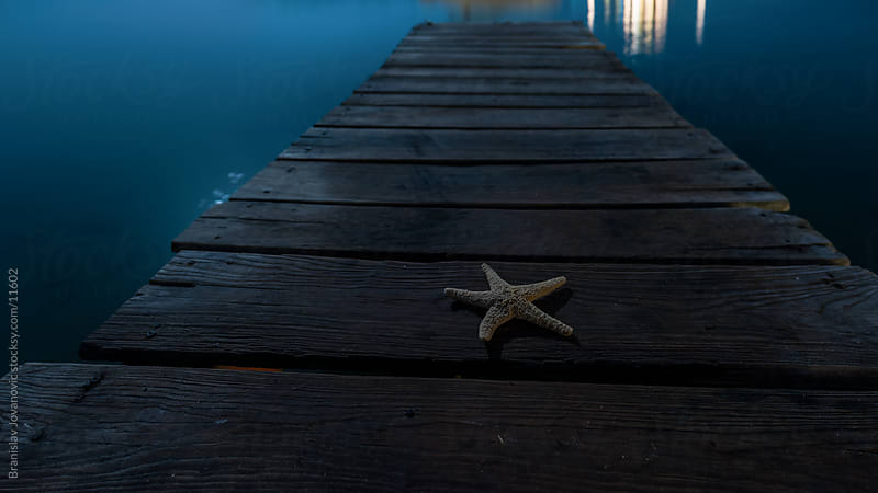 Starfish on a wooden dock by Brkati Krokodil for Stocksy United