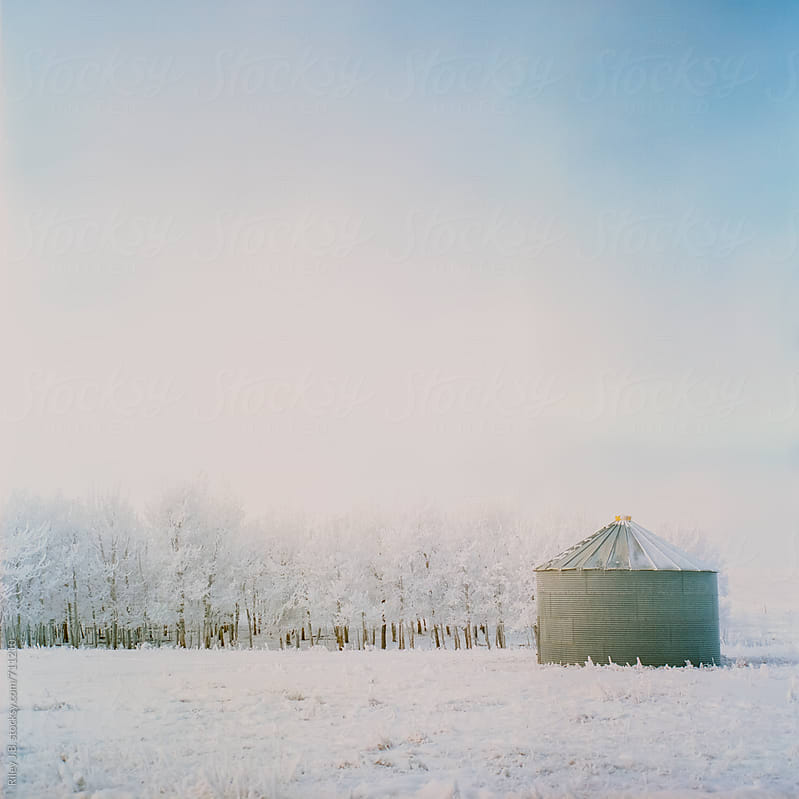 A small silo next to snow covered trees by Riley Joseph for Stocksy United
