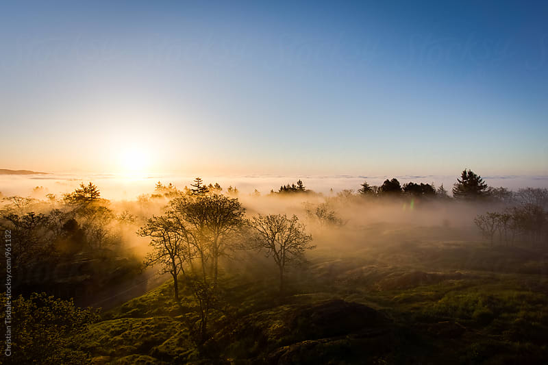 Sunrise over the edge of a mountain covered in fog by Christian Tisdale for Stocksy United