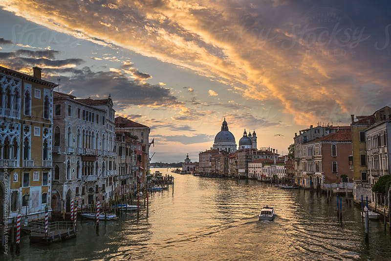 Grand Canal in Venice at Sunrise by Andreas Wonisch for Stocksy United