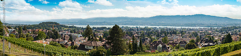 Panorama of Zurich from Sonnenberg , Switzerland by Borislav Zhuykov for Stocksy United