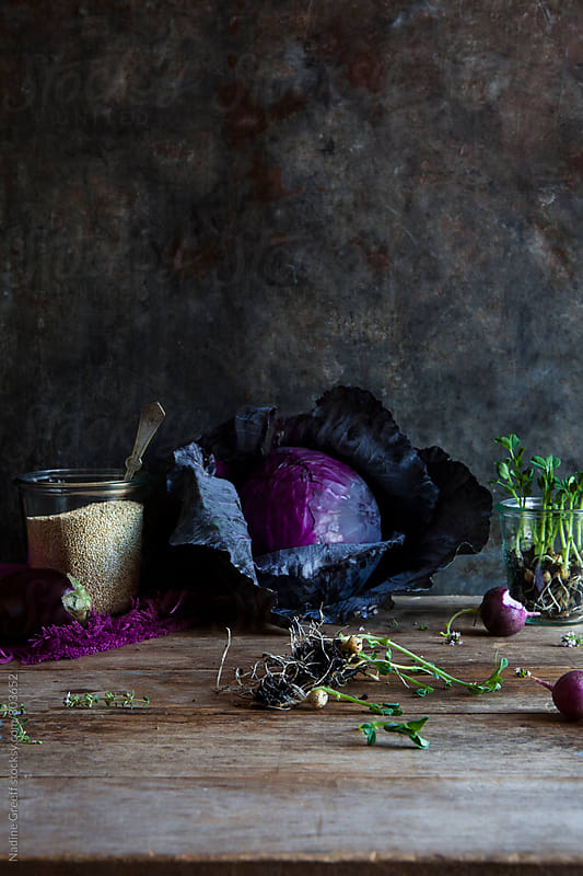 Red cabbage, radish, eggplant, pea sprouts and quinoa in jar still life by Nadine Greeff for Stocksy United