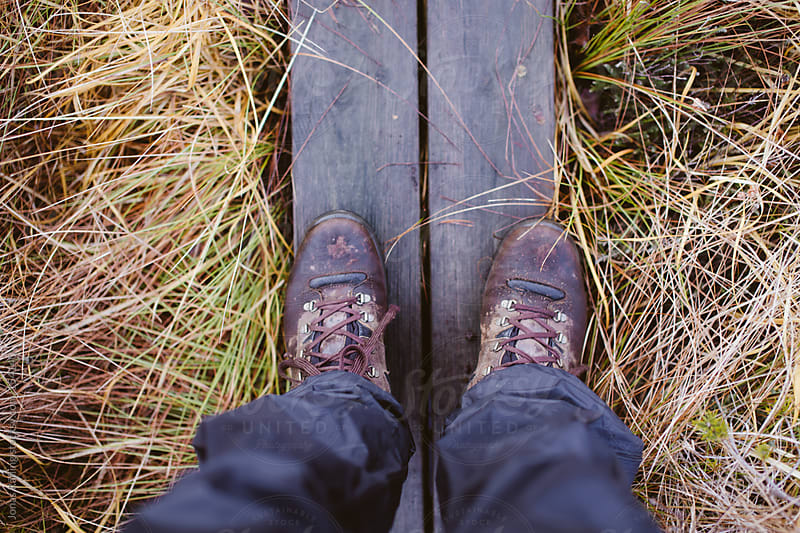 Hiking boots on planks in a swamp at fall by Jonas Räfling for Stocksy United