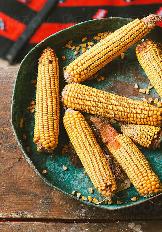 Ripe corn on the blue plate. by Marija Savic for Stocksy United