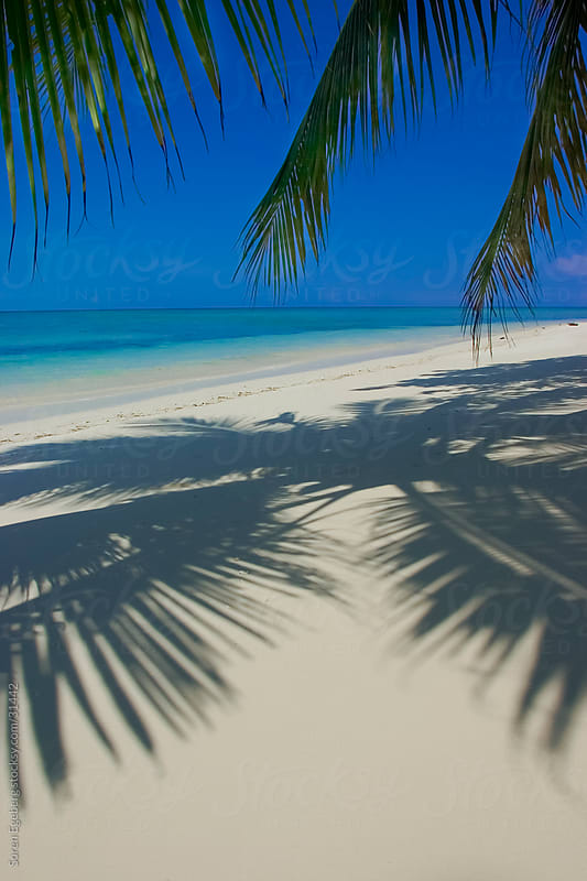 Tropical white sand beach with palm tree leaves and deep blue sky over turquoise ocean. by Søren Egeberg Photography for Stocksy United