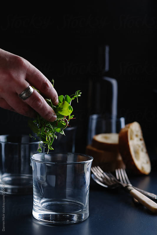 Micro herb salad leaf being put into a glass. by Darren Muir for Stocksy United