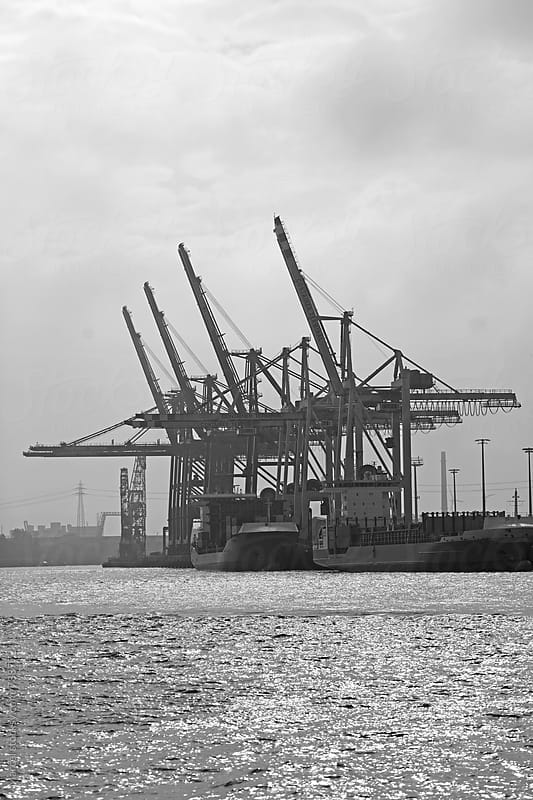 Container terminal in Hamburg harbour by Marcel for Stocksy United
