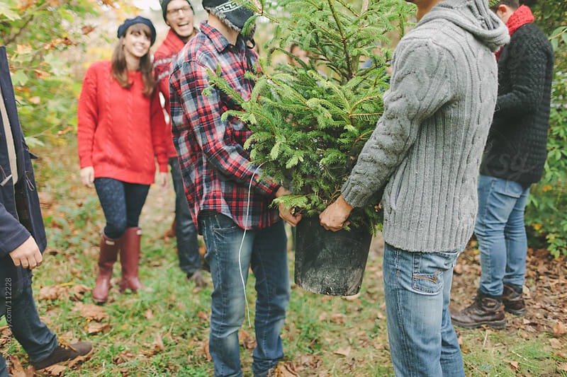 Friends Carrying Pine Tree Outdoor by HEX. for Stocksy United