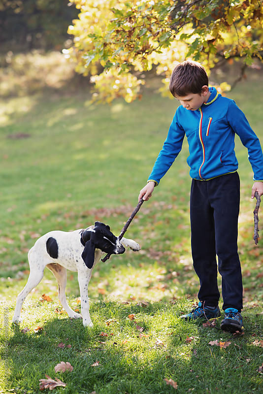 Young boy playing fetch with his dog by Lea Csontos for Stocksy United