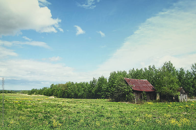 Landscape of old deserted barn by Sandra Cunningham for Stocksy United